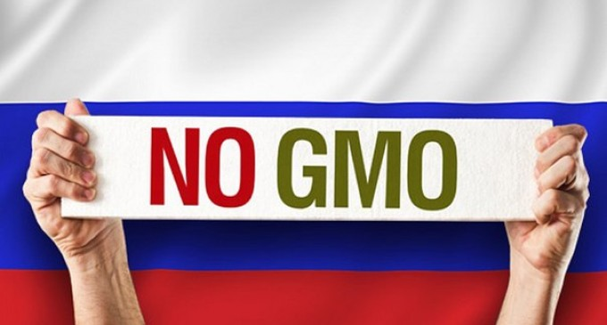 Russia is the first in the world to ban the import of products containing GMO