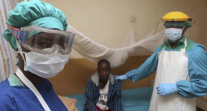 Nigeria struggles to contain dramatic spread of deadly Lassa fever