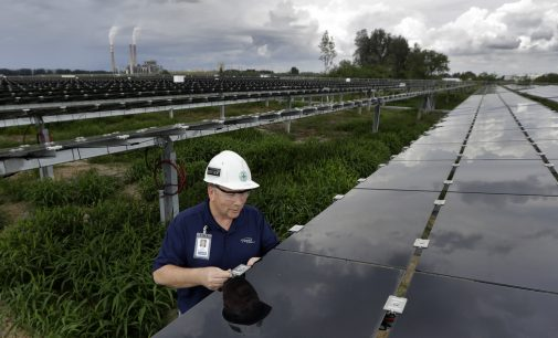 Trump's Solar Tariffs Blamed for Billions in Shelved Clean Energy Projects