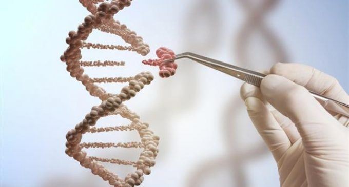 Scientists warn gene editing tool may raise cancer risk in cells