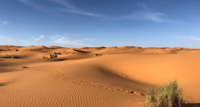 Trump Wants Spain to Build a Wall Across the Sahara Desert