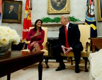Hawkish US Ambassador to the UN Nikki Haley Suddenly Resigns