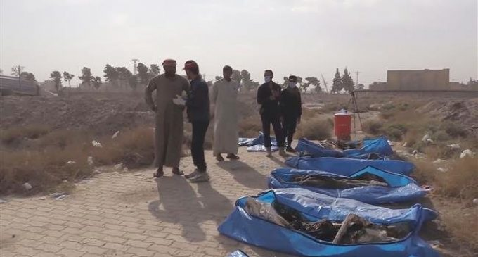 Around 1,500 bodies uncovered in Raqqa's largest mass grave to date
