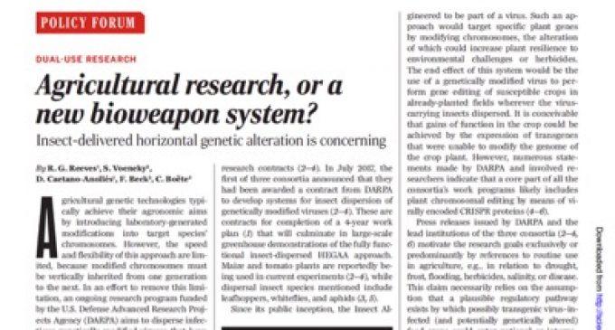 Pentagon's plan: transformation of cereal fields into GMOs