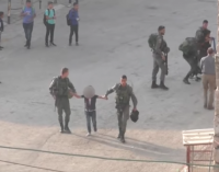 Watch | Israeli Occupation Forces Detain Palestinian Kids Walking to School