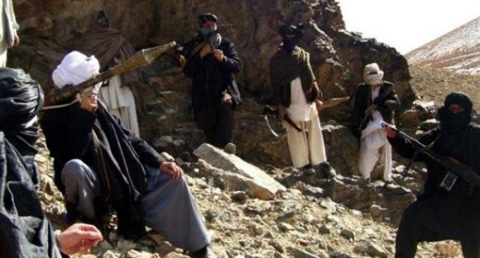 Afghan Taliban storm security posts in western province, killing 21
