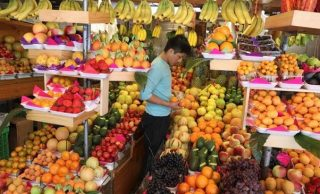 New plant-focused diet can save millions of people annually: Scientists