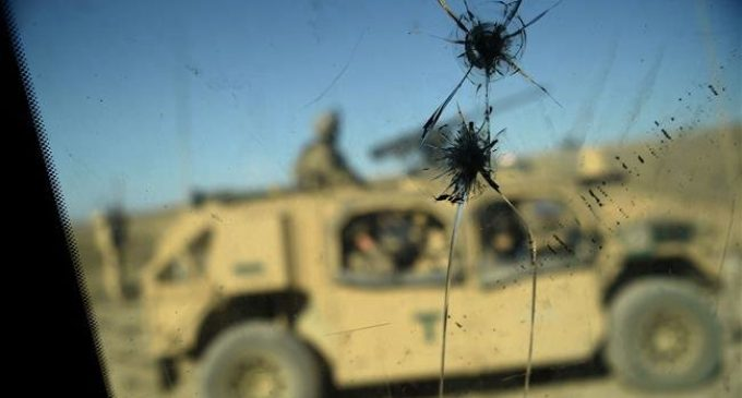 US service member killed in combat in Afghanistan: Pentagon
