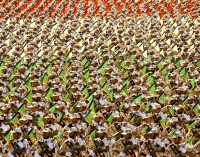 Is Trump's Designation of Iran Revolutionary Guard Corps as Terrorist Organization a Set-Up for War?