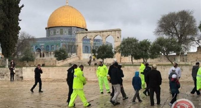 Israeli agriculture minister, settlers 'tour' al-Aqsa Mosque compound
