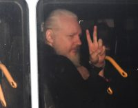 Amnesty International Hangs Julian Assange Out to Dry — or Possibly Just Hang