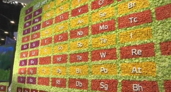 Russia's top chemical companies celebrate periodic table with flower wall