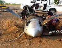 Downing of US MQ-9 Drone Over Hodeida Shows Direct US Involvement in Yemeni War