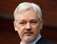 The Assange Affair