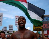 Lessons from Palestine: America's People of Color Need a Sustained Resistance Movement