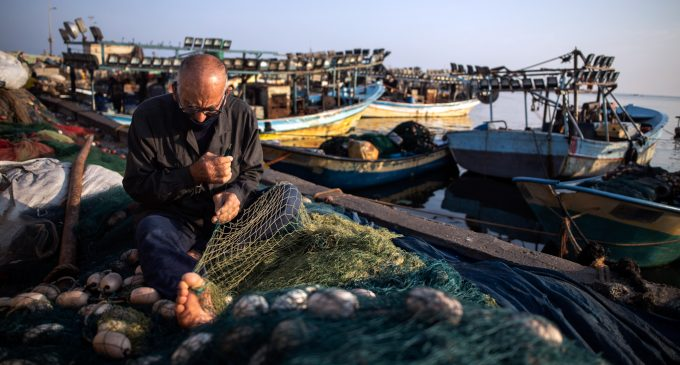Israeli Human Rights Group Highlights How Israel Makes Fishing in Gaza Deadly