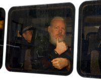 Pamela Anderson Leads Diverse Left-Right Coalition Pushing Trump to Pardon Assange